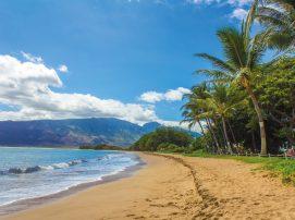 Spot on Travel Hawaii